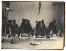 The mealing trough - Hopi ca. 1906 Four young Hopi women grinding grain.