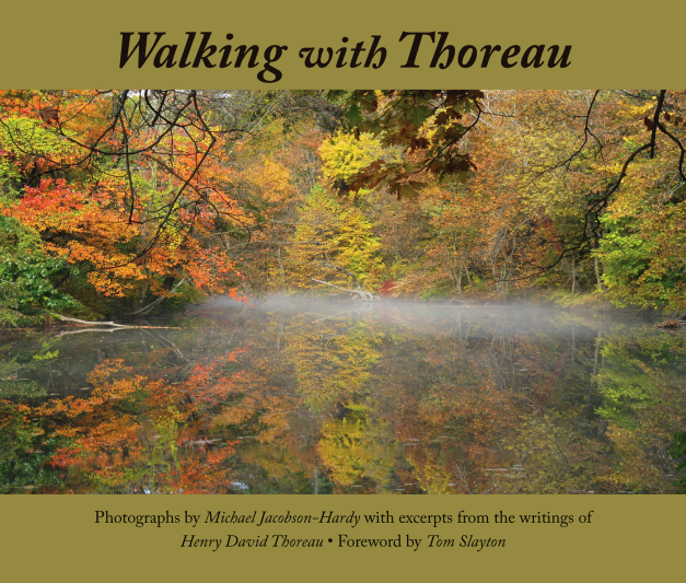 Walking-with-Thoreau